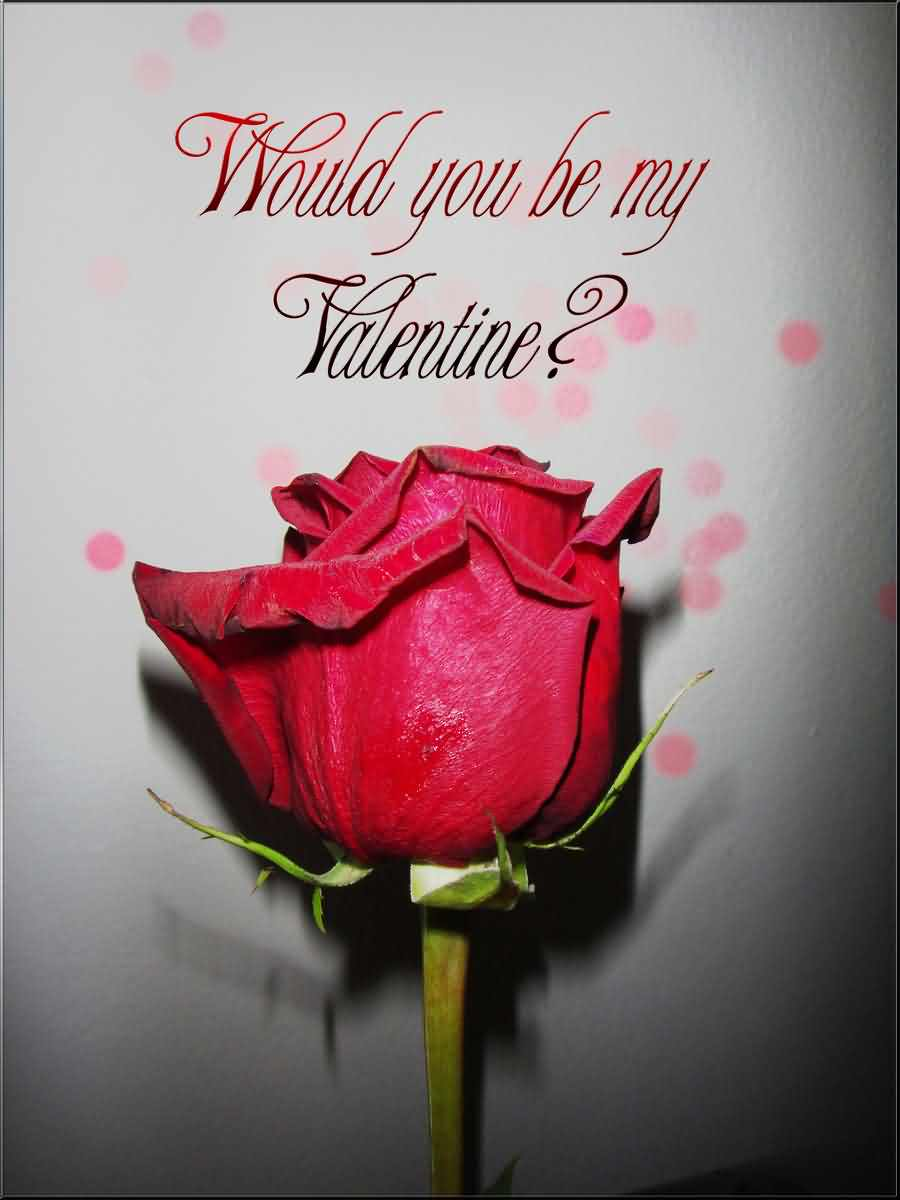 Would You Be My Valentine Rose Image
