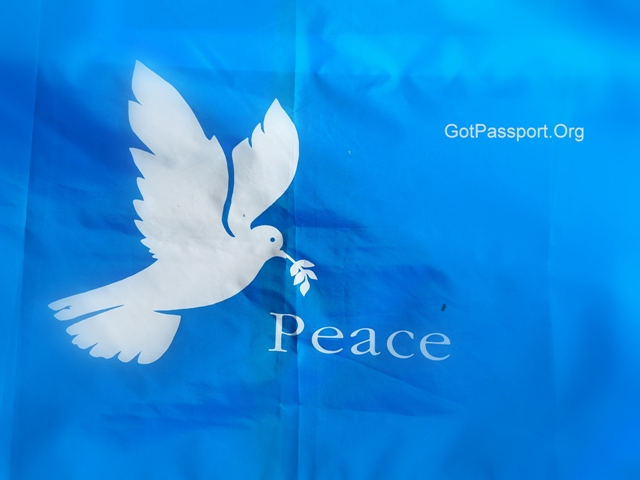 117-International Peace Day Wishes