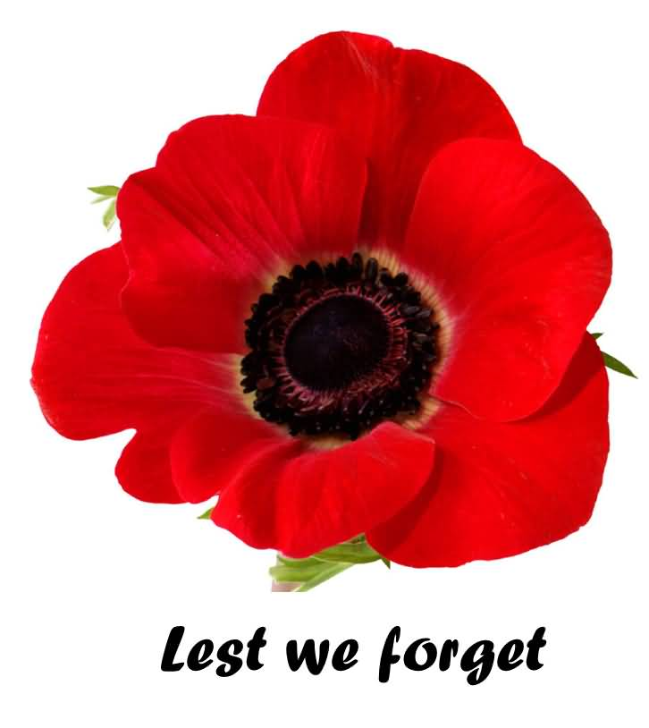 126-Remembrance Day Wishes