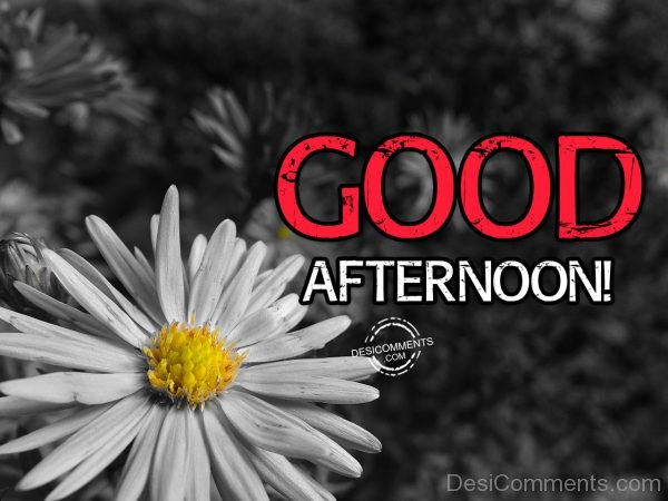 40-Good Afternoon
