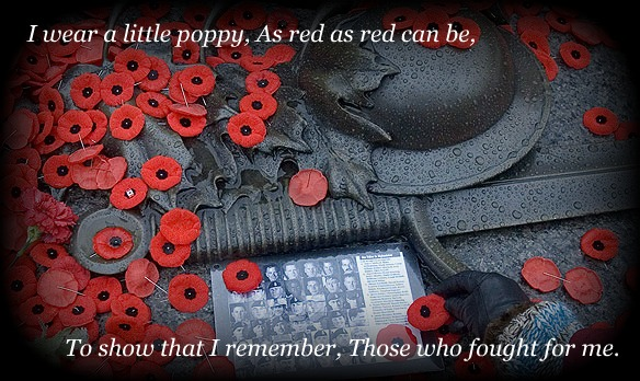 46-Remembrance Day Wishes