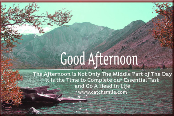 5-Good Afternoon