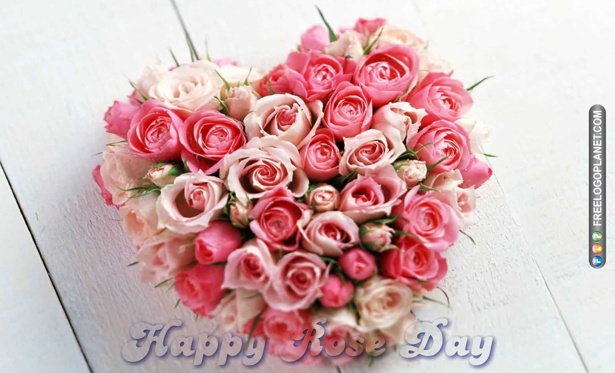 8-Rose Day Wishes