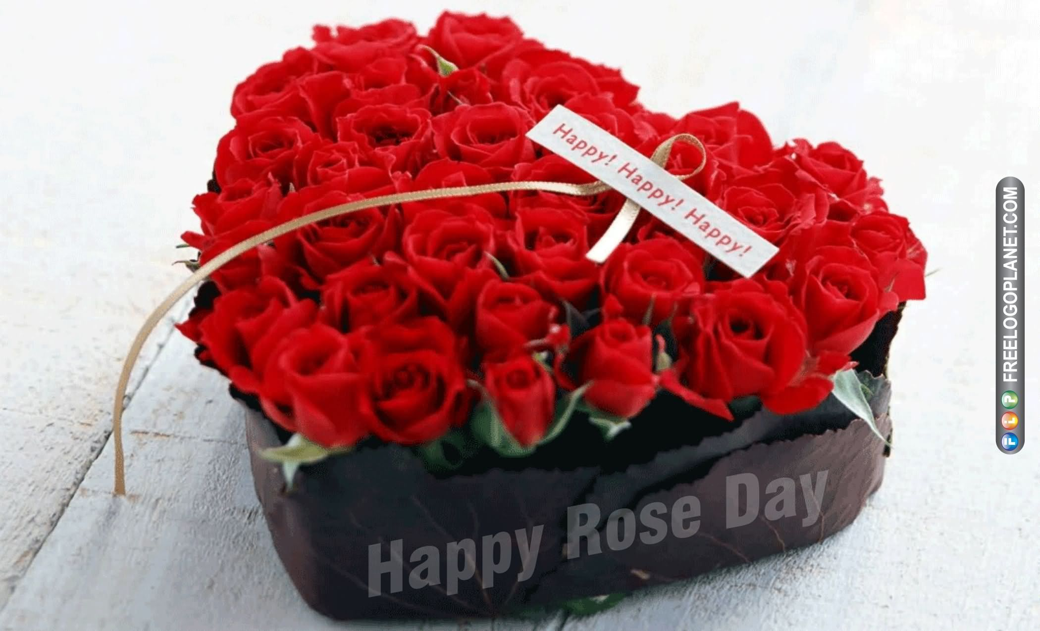 9-Rose Day Wishes