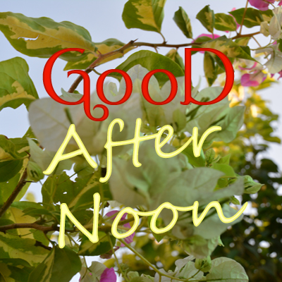 90-Good Afternoon
