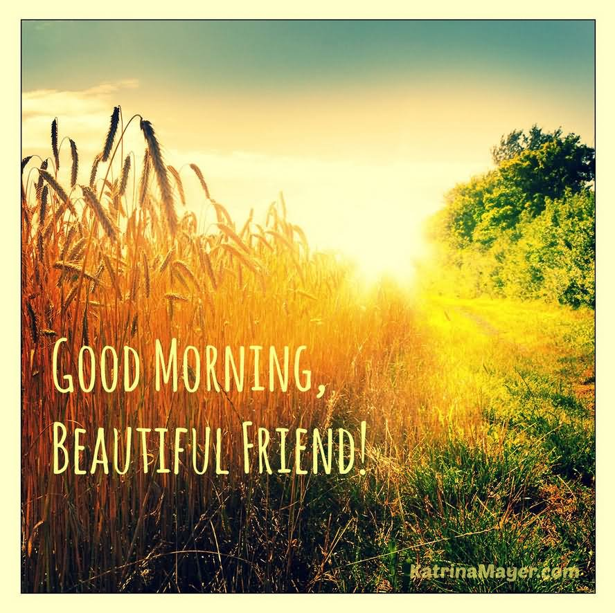 Beautiful Good Morning Friend Wallpaper