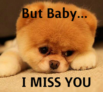 Cute Puppy Wishes But Baby I Miss You Wonderful Image