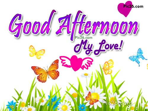 Good Afternoon My Love Greeting Image