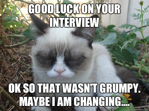Good Luck On Your Interview Ok So That Wasn't Grumpy May Be I Am Changing Meme Image