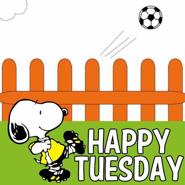 Happy Tuesday Snoopy Enjoy Your Day