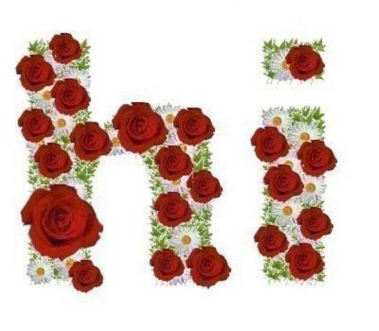 Hi Red Roses Flowers Greeting For lovely Friend