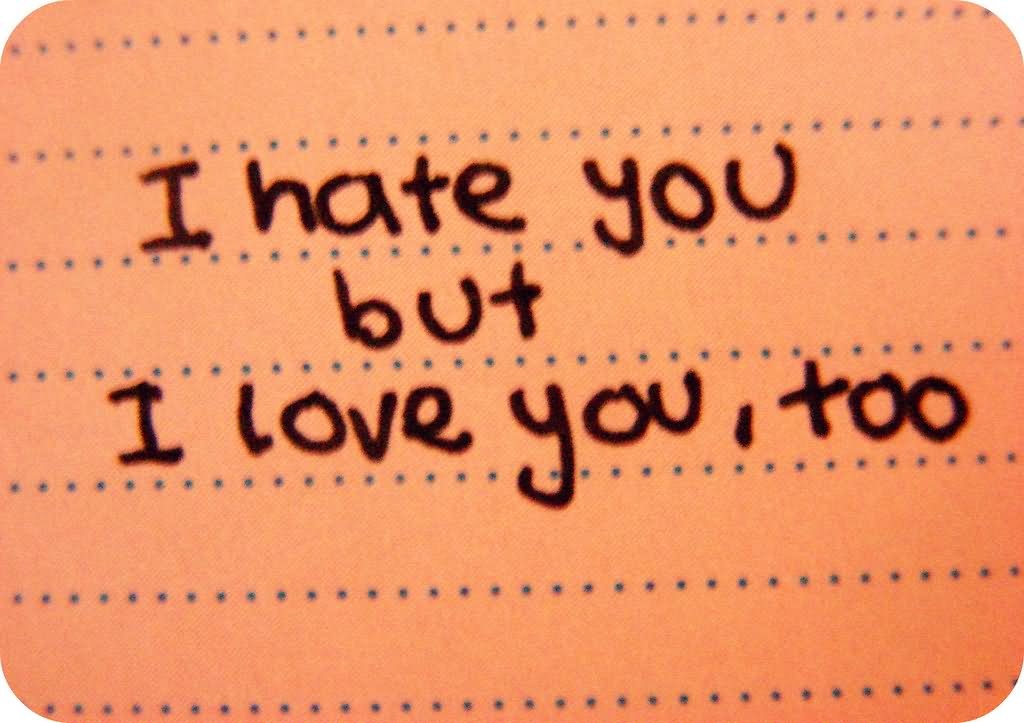 I Hate You But I Love You Too Message Image