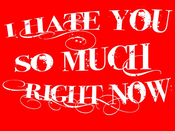 I Hate You So Much Right Now Image