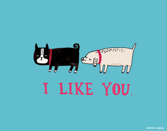 I Like You Funny Dogs Picture