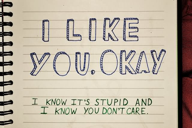 I Like You Okay I Know Its Stupid And I Know You Dont Care Written Page Image