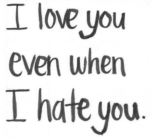 I Love You Even When I Hate You Message