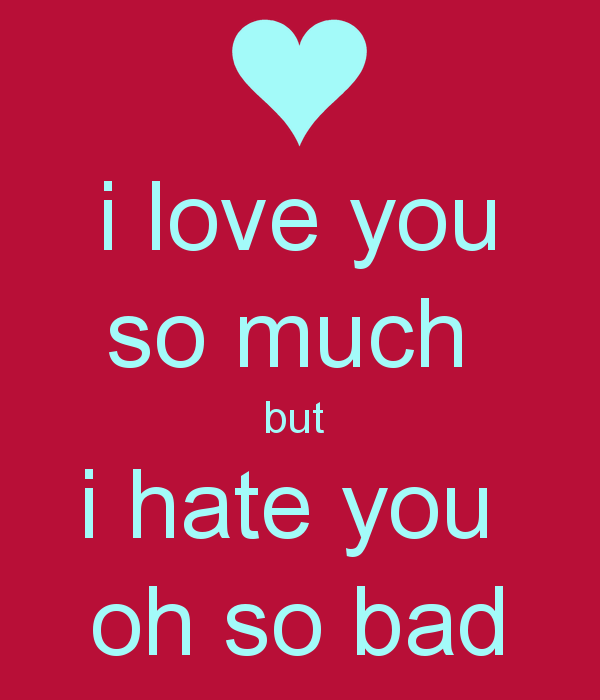 I Love You So Much But I Hate You Oh So Bad Image