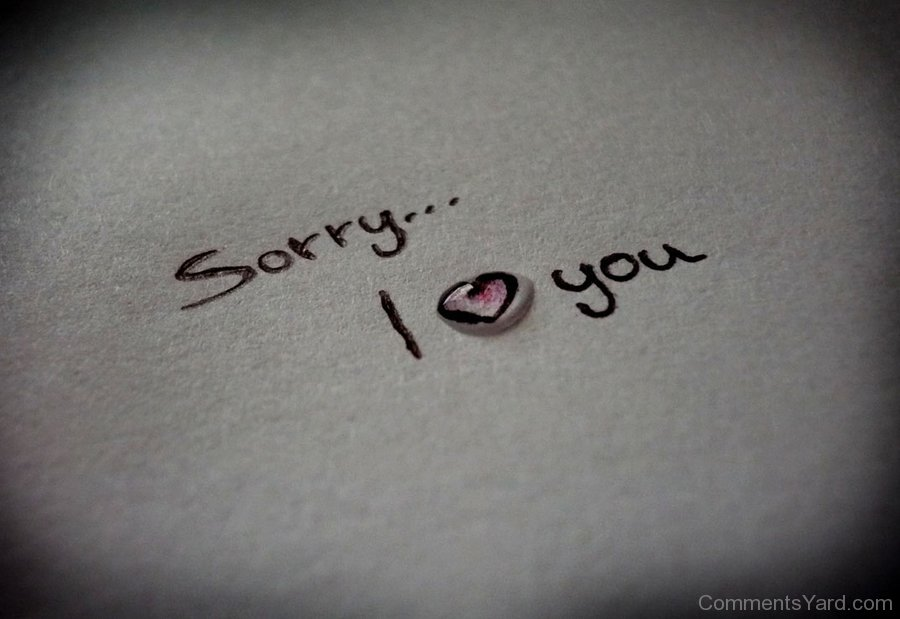 Sorry I Love You Wallpaper