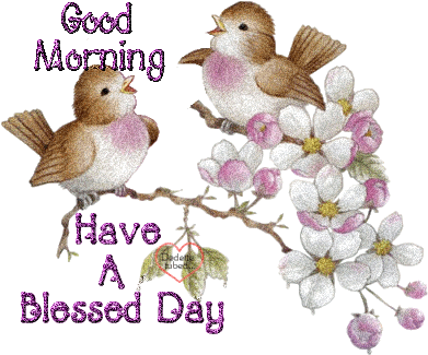 Wonderful Good Morning Have A Blessed Day Birds Image Greeting