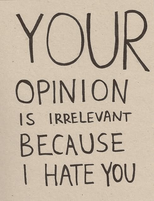 Your Opinion Is Irrelevant Because I Hate You Message Image