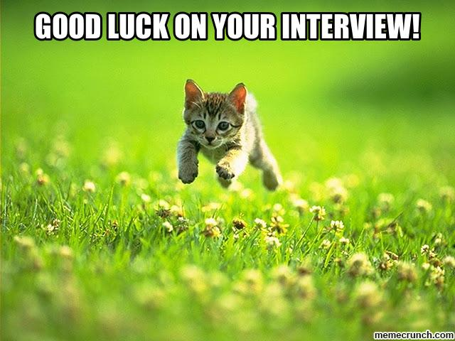 kitten Wishes Good Luck On Your Interview