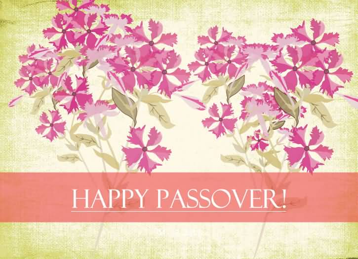 116-Happy Passover Wishes