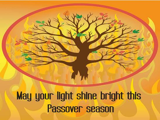 129-Happy Passover Wishes