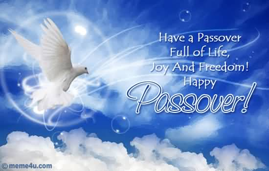 174-Happy Passover Wishes