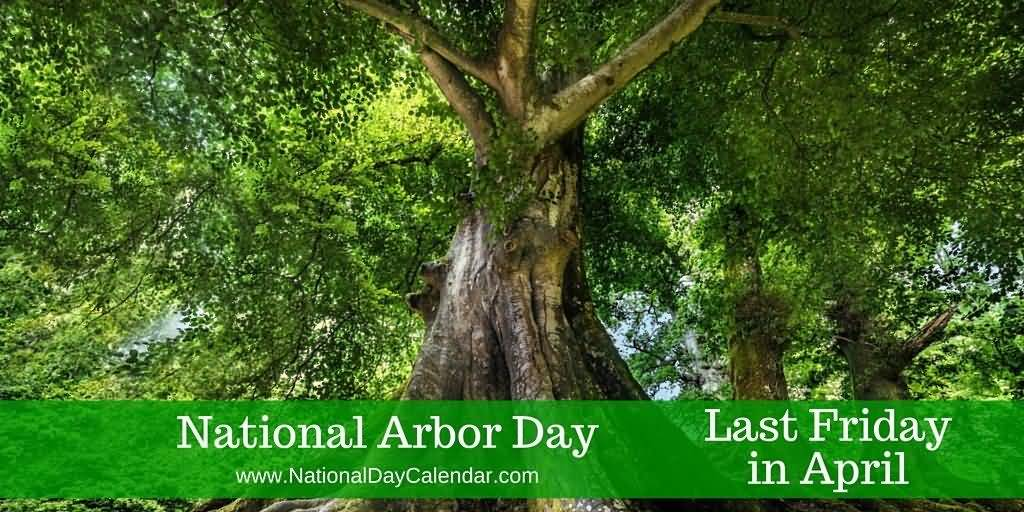 19-Arbor Day Wishes