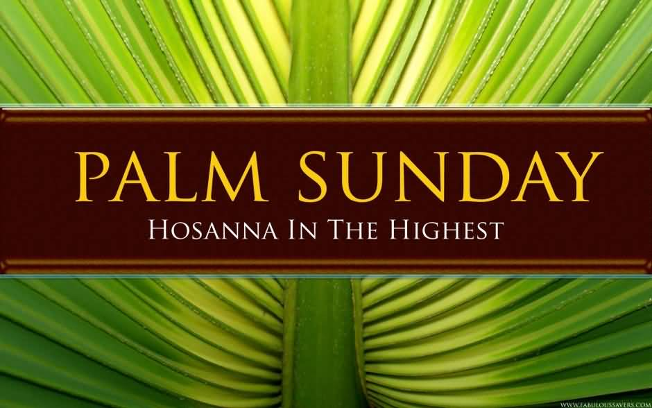 57-Palm Sunday Wishes