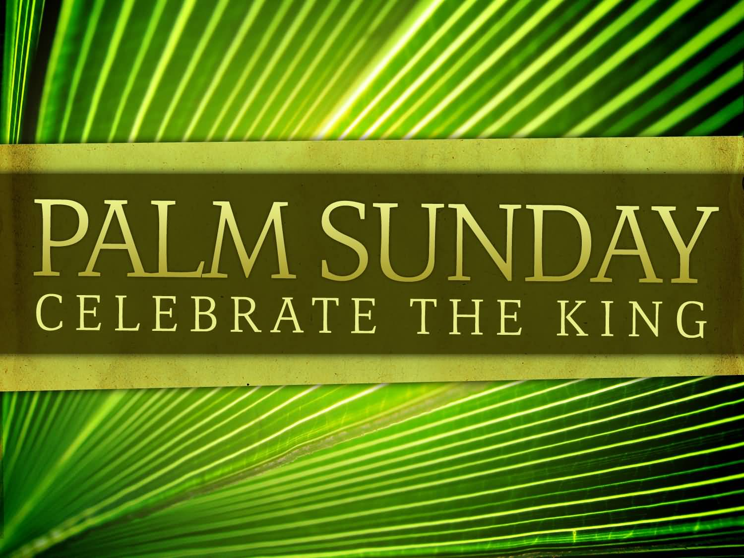 6-Palm Sunday Wishes