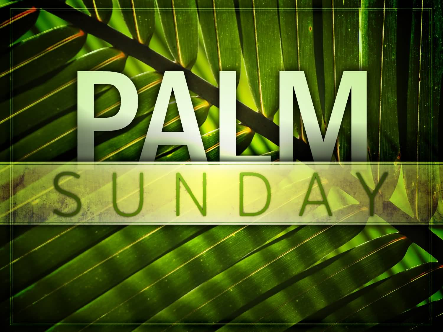 7-Palm Sunday Wishes