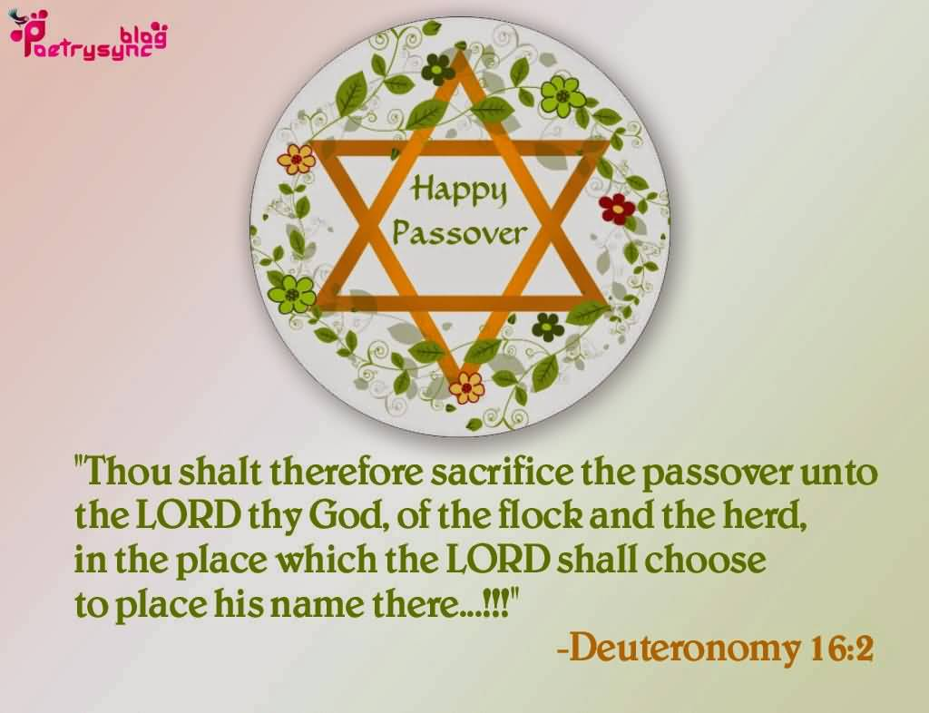 93-Happy Passover Wishes