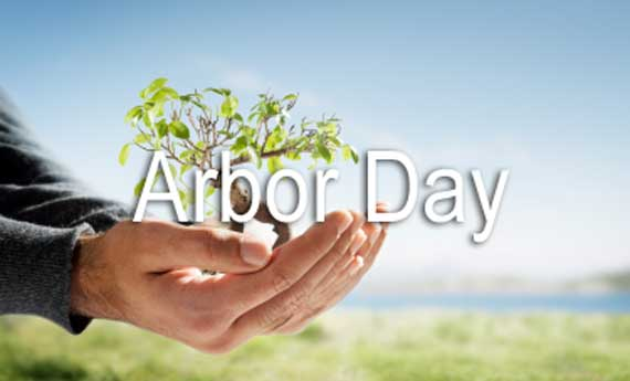 97-Arbor Day Wishes