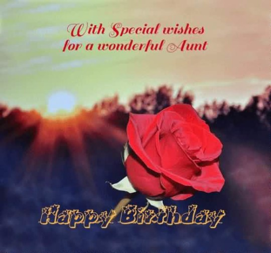 Adorable Red Rose Aunt Birthday Wishes
