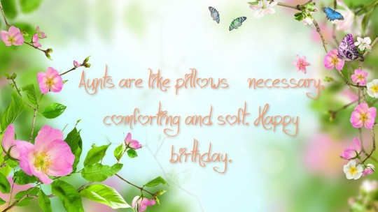 Mind Blowing Sayings For Aunt Birthday