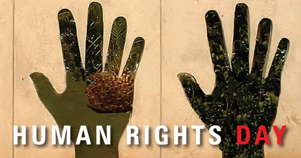 Brilliant Human Rights Day Wishes