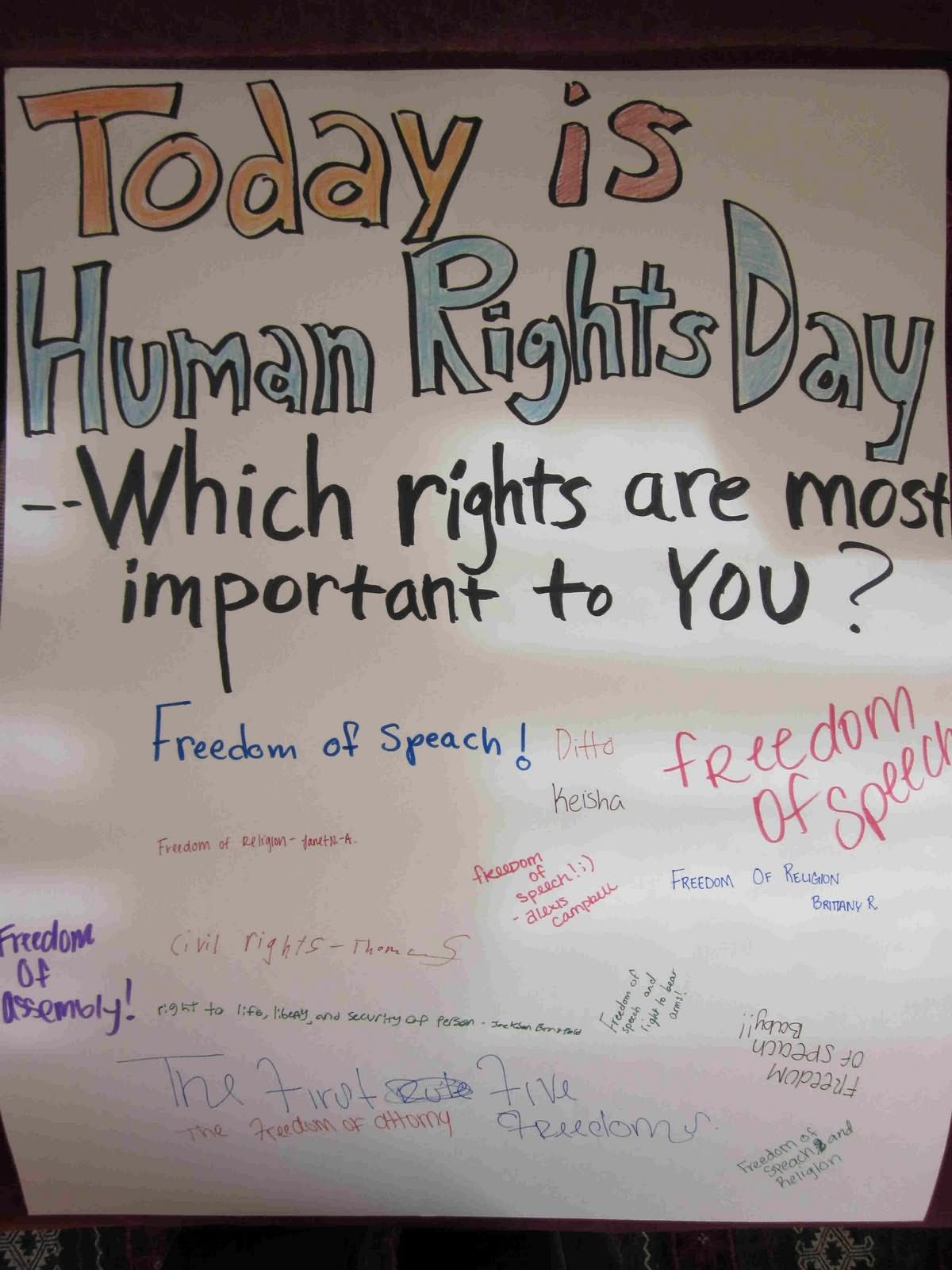 Brilliant Human Rights Day