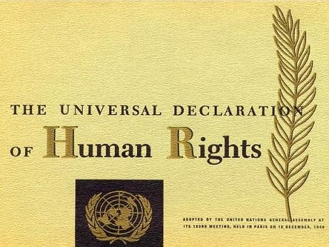 Excellent Human Rights Day