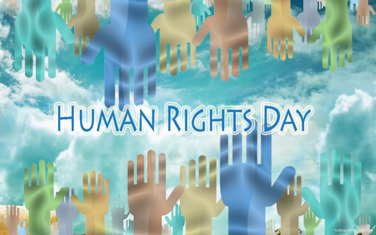 Fabulous Human Rights Day