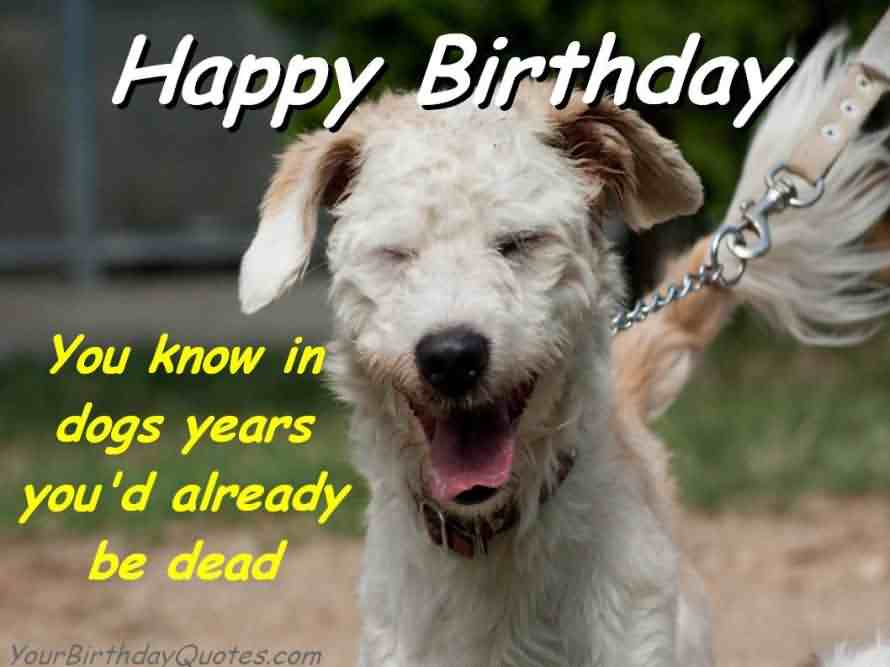 Funny Birthday Greetings With E-Card