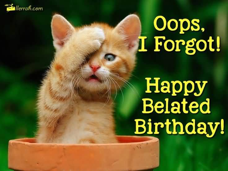 Funny E-Card Birthday Wishes
