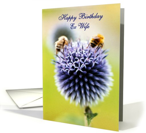 Nice Card Happy Birthday Wishes For Ex