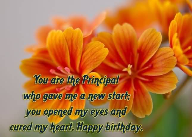 Sweet Birthday Greetings