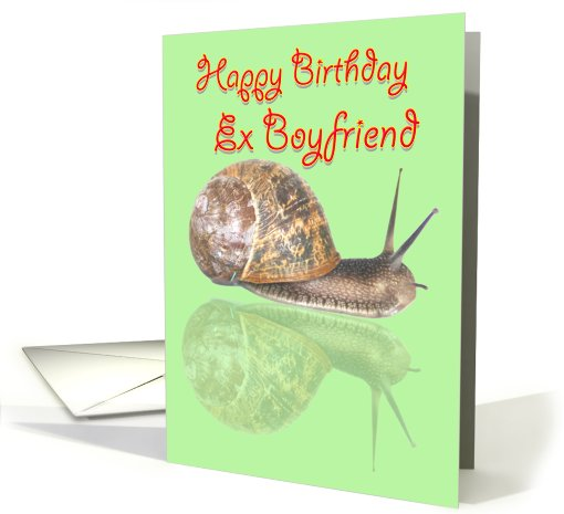 Wonderful Birthday Greetings E-Card