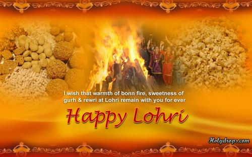 Wonderful Lohri Picture