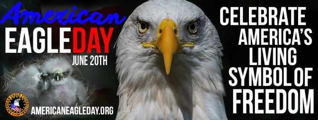 American Eagle Day June 20th