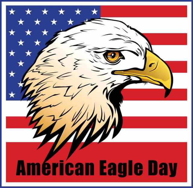 American Eagle Day Wallpaper