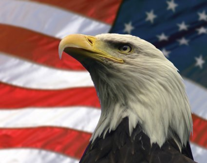 National American Eagle Day Wishes