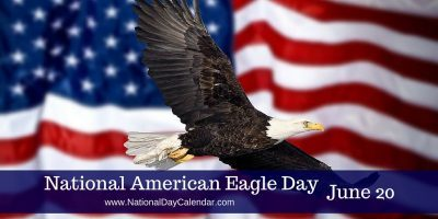 Nice Wallpaper Of National American Eagle Day